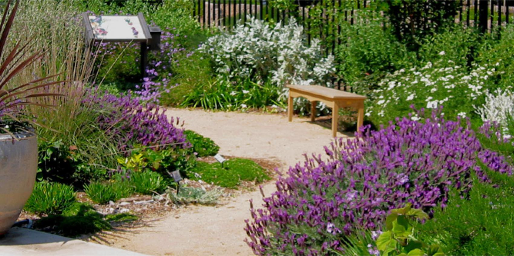 UC Davis Arboretum And Public Garden | American Public Gardens ... on
