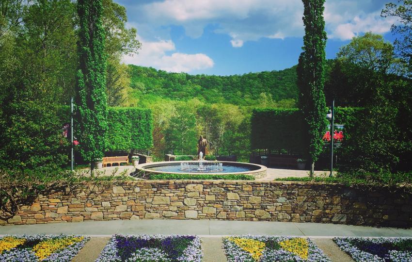 Quill Garden
