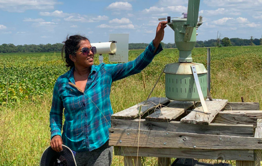 Nelomie Galagedara is seen here using both the simple wind vane spore trap and the larger one, which uses paraffin-coated tape and is connected to a power source. Photo by Maria Izabel Costa de Novaes/LSU AgCenter