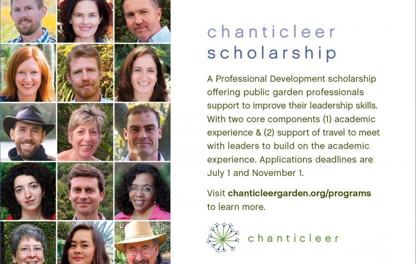 Chanticleer Scholarship